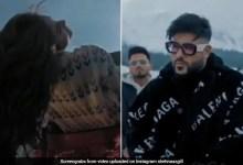 शहनाज गिल ने Video शेयर कर दिखाई बादशाह संग नए सॉन्ग की झलकियां, इस दिन रिलीज होगा 'फ्लाई' सॉन्ग