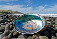News24.com | 65 suspected abalone poachers arrested in Cape Town