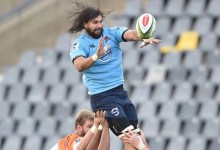 News24.com | Cheetahs did homework on Jacques Potgieter: 'He must be here for right reasons'