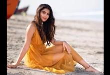 पूजा हेगड़े सलमान खान के साथ काम कर रही हैं: उन्होंने किसी को सेट पर बातचीत करने के लिए तत्पर किया है
