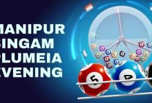 Manipur Lottery Results Today 03.5.2021 : Singam Plumeia Evening Lottery Results Live