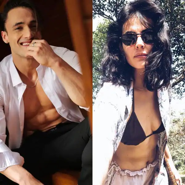 Sunny Leone, Asim Riaz, and more: Ahead of Bigg Boss 15, here's a look at the HOTTEST contestants of all time – view pics