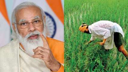 PM Kisan FPO Scheme: Centre to provide Rs 18 lakhs for farmers if they do THIS
