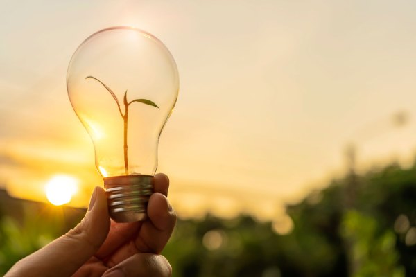 Tudo o que você precisa saber sobre as energias sustentáveis
