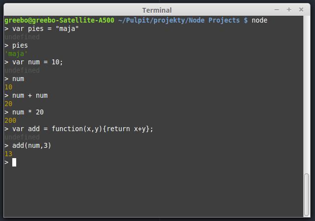 node dla poczatkujacych terminal