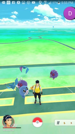 TFW you're out of poke balls and this happens