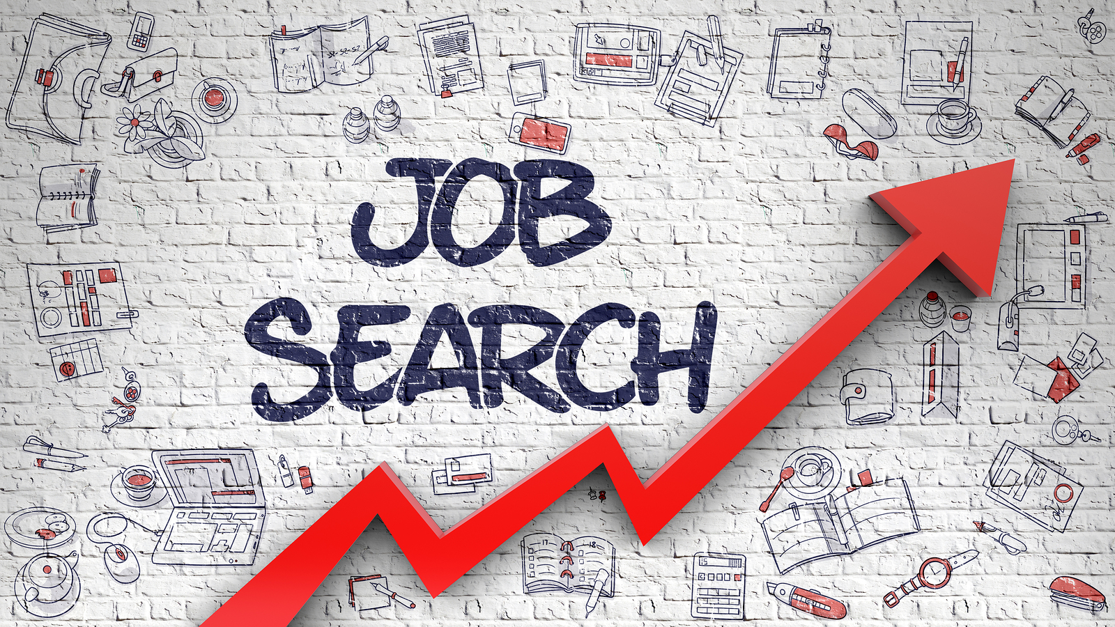 12 Steps to Help You Obtain a Successful Job Search JSG