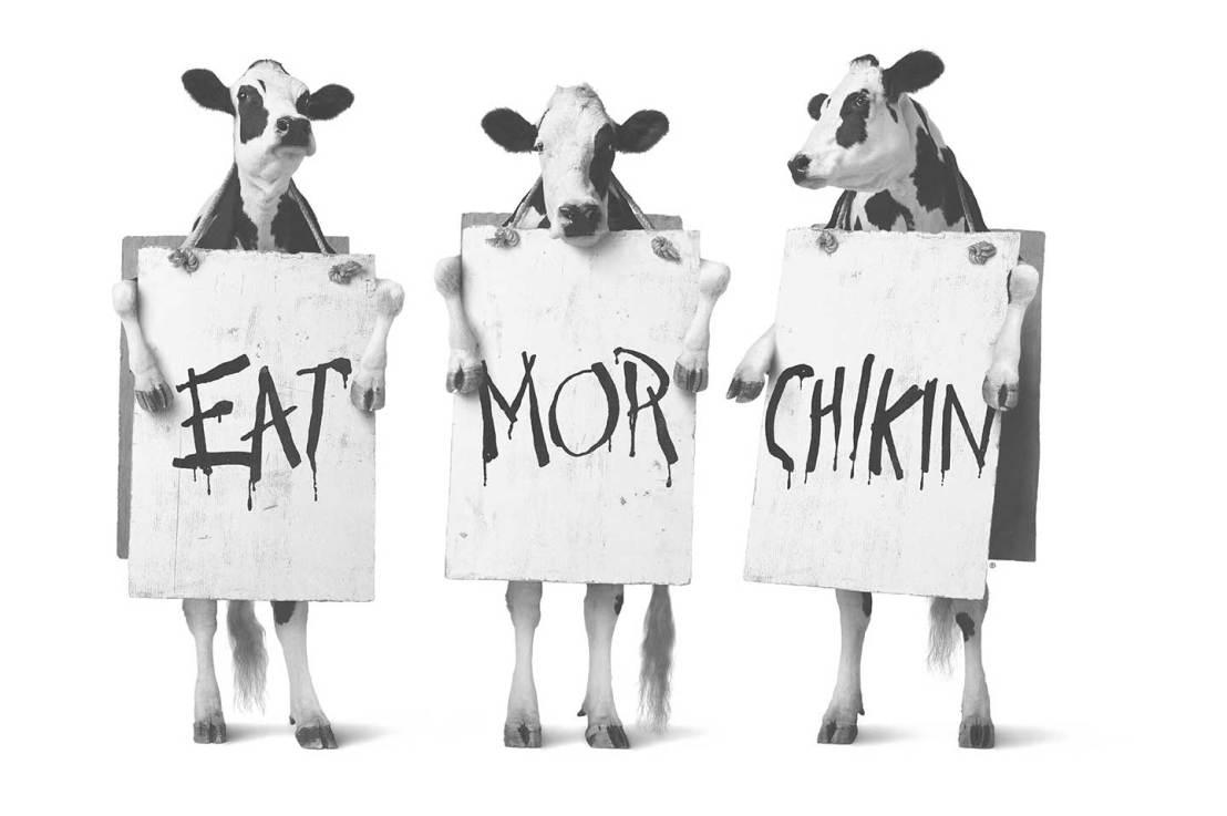 Covert Cows by Steve Robinson Summary
