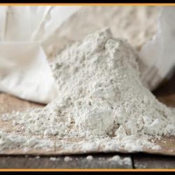 133269-318902-1731551-terra-de-diatomea-fertilizante-organico-e-insecticida-organico