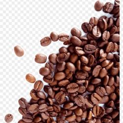 coffee-beans-and-leaf-11563528340xaelz3ik8i
