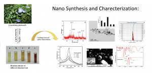 Website Photo-Nanosynthesis