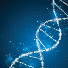 Molecular Biology and Genetic Engineering Techniques