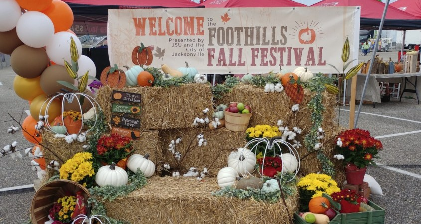 Hundreds of people attended the Foothills Fall Festival and experienced food vendors, rides and more on November 21. (Alexandra O'Neal/The Chanticleer)