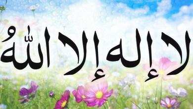 Photo of 23 bienfaits de la parole de « Lâ ilâha illa Llâh »