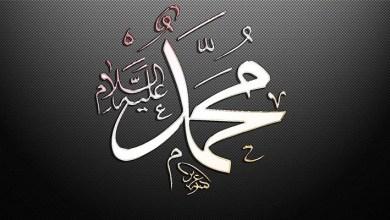 Photo of 12 preuves que Mohammed est un véritable prophète