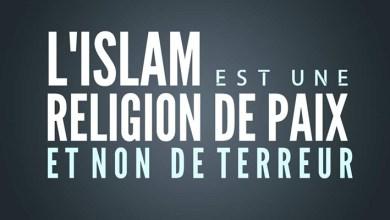 Photo of Que dit l'islam à propos du terrorisme ?