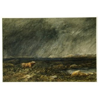 The Challenge: A Bull in a Storm on a Moor - David Cox http://collections.vam.ac.uk/item/O16381/the-challenge-a-bull-in-watercolour-david-cox/