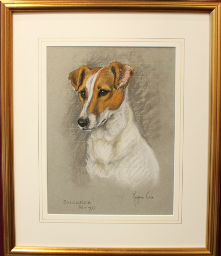 Study of a Jack Russell- Snooker – Marjorie Cox
