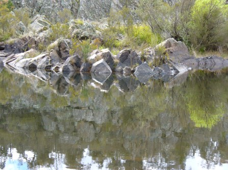 36-shoalhaven-river-bombay-reserve-p1000615