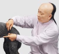 JTCVM国際中獣医アカデミー日本校特別講座