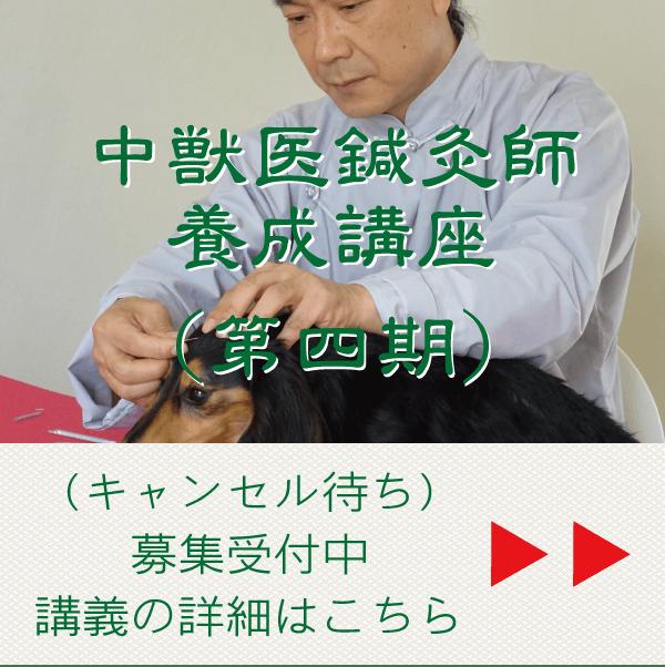 中獣医鍼灸師養成講座(第四期)(キャンセル待ち)|JTCVM国際中獣医学院日本校