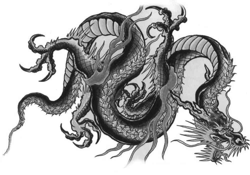 Dragon Chinois le dragon en chine
