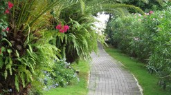 Sint Maarten pathway at hotel