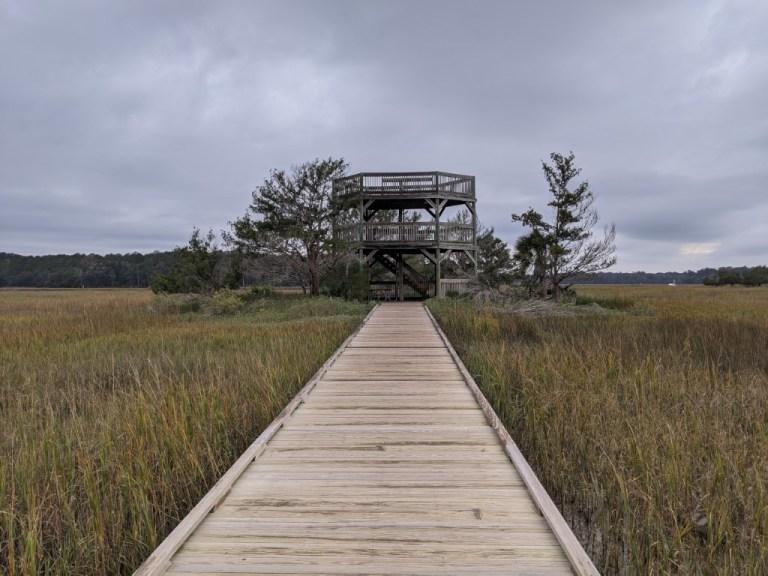 Skidaway Island State Park observation tower