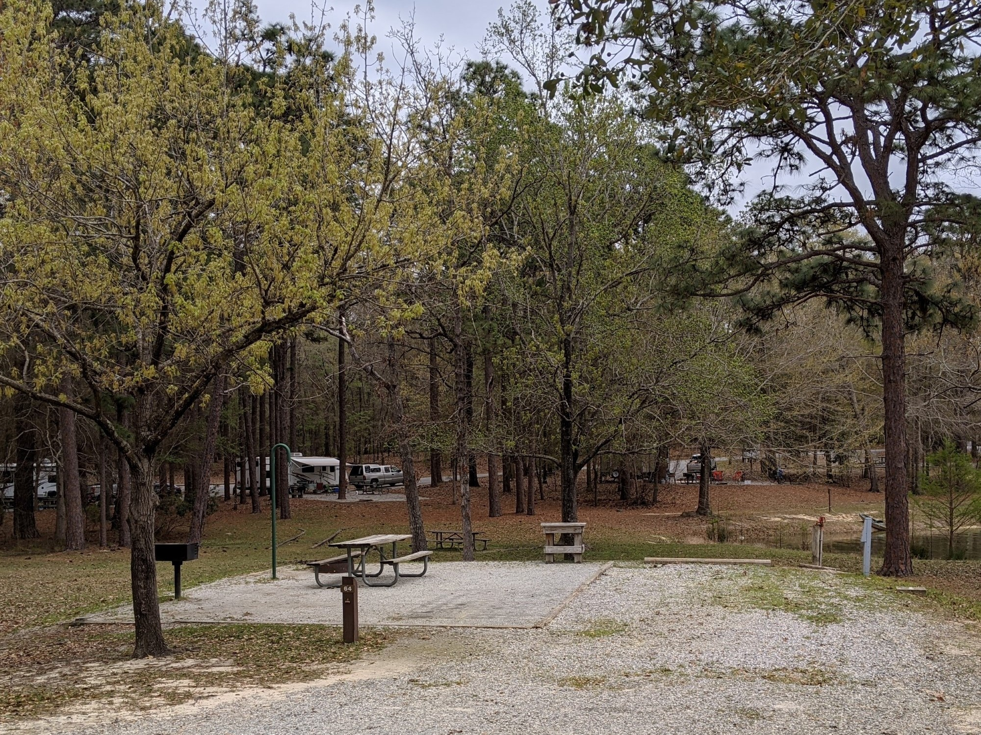 Cotton Hill Campground site