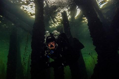 Editorial - Scuba diving in Welland.