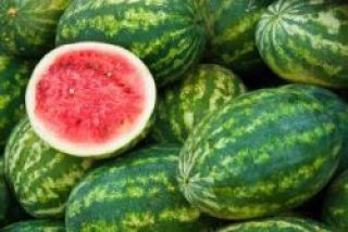 Watermelon jtnonline