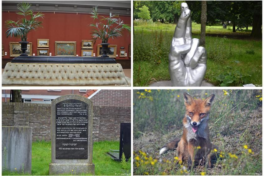 Augustus 2021: Teylers Museum in Haarlem, de beeldengalerij in Haarlem, de Joodse begraafplaats in Amersfoort tijdens de 8e etappe van het Westerborkpad en een vos in de Amsterdamse Waterleidingduinen