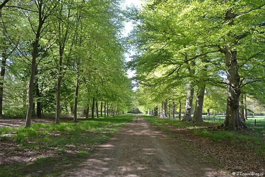 Landgoed Vogelenzang