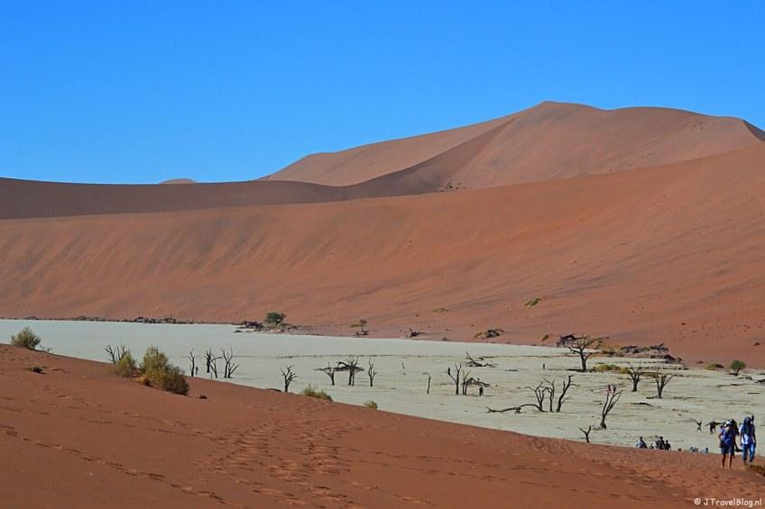 Bijzonder natuurfenomeen in Namibië: Deadvlei