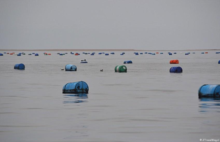 Oestertonnen tijdens de boottocht bij Walvis Bay