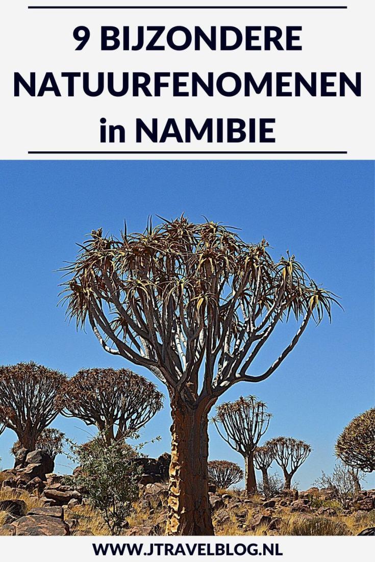 Namibië staat bekend om zijn bijzondere natuurfenomenen. Van oude planten en de grootste zeehondenkolonie in Afrika tot zandduinen. Ik heb er 9 voor je op een rijtje gezet. Meer lees je hier. Lees je mee? #namibie #namibia #afrika #africa #natuurfenomenen #jtravel #jtravelblog