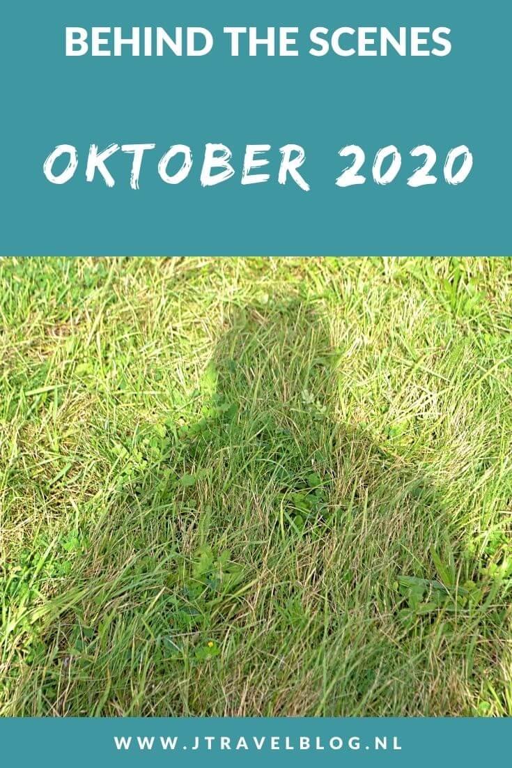 In oktober 2020 liep ik de derde etappe van het Westerborkpad van Station Weesp via Muiden naar Muiderberg, maakte ik een wandeling in de Amsterdamse Waterleidingduinen en bezocht ik de Bijbelse Tuin Hoofddorp. Meer hier over lees je in dit maandoverzicht. #maandoverzicht #oktober2020 #westerborkpad #weesp #muiden #muiderberg #awd #amsterdamsewaterleidingduinen #bijbelsetuinhoofddorp #jtravel #jtravelblog