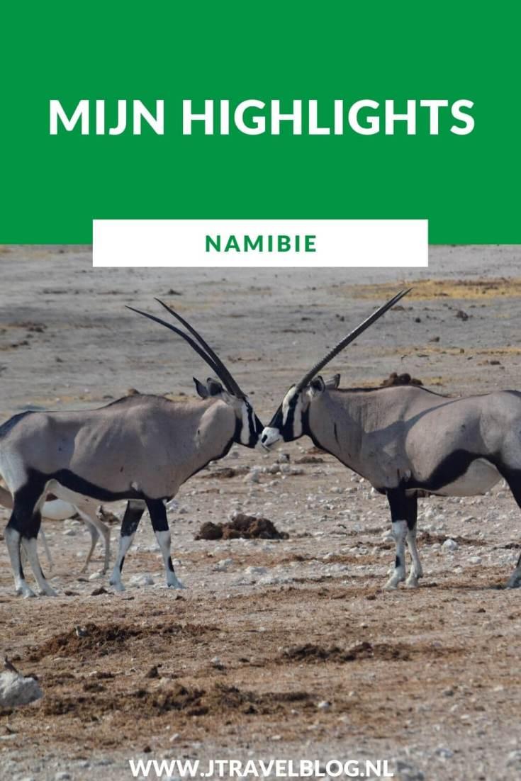 Ga je op reis naar Afrika, denk dan ook eens aan Namibië als bestemming. Een fantastisch land. Ik heb mijn highlights van Namibië voor je op een rijtje gezet. Lees je mee? #namibia #namibie #afrika #africa #olifant #elephant #etoshanationalpark #jtravel #jtravelblog #wildlife
