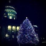 Boise Capitol Christmas Tree