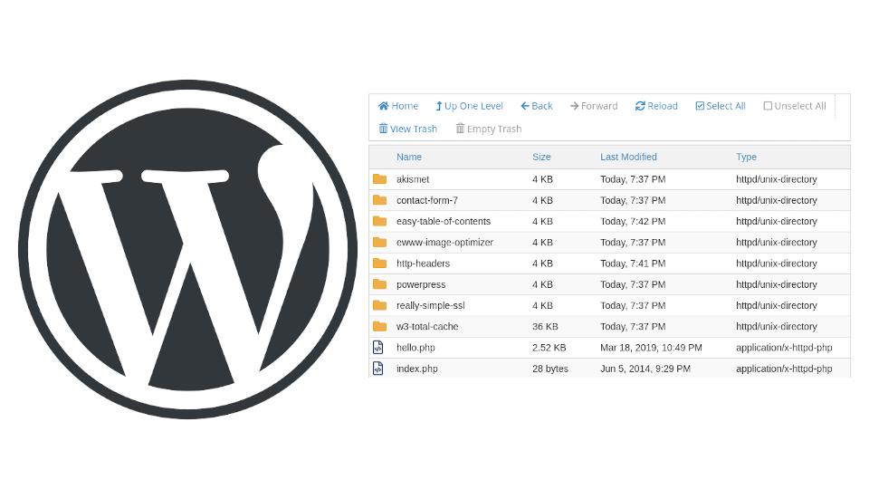 5 Best WordPress Plugins For My Goals