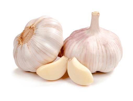 Bawang Putih tidak hanya menjadi bahan dapur saja, tetapi juga bisa menjadi ramuan herbal obat penyakit snot pada ayam | gambar 2