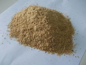 Pakan ayam kalkun bisa menggunakan dedak padi
