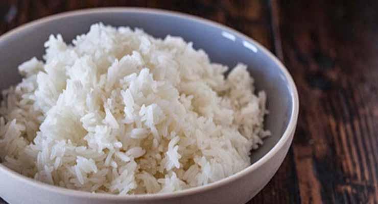 Nasi Untuk Pakan Ayam Kapas