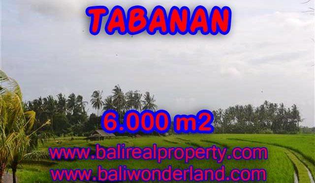 Murah ! Tanah di TABANAN Bali Dijual TJTB093