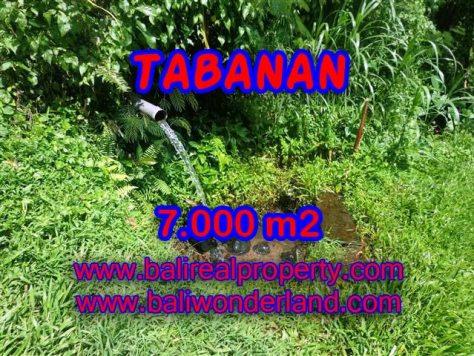 TANAH DIJUAL DI BALI, MURAH DI TABANAN RP 270.000 / M2 - TJTB089 - INVESTASI PROPERTY DI BALI