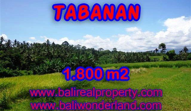 INVESTASI PROPERTI DI BALI - TANAH DI TABANAN BALI DIJUAL CUMA RP 750.000 / M2