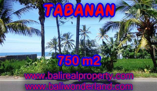 TANAH MURAH DIJUAL DI TABANAN BALI TJTB105 - PELUANG INVESTASI PROPERTY DI BALI