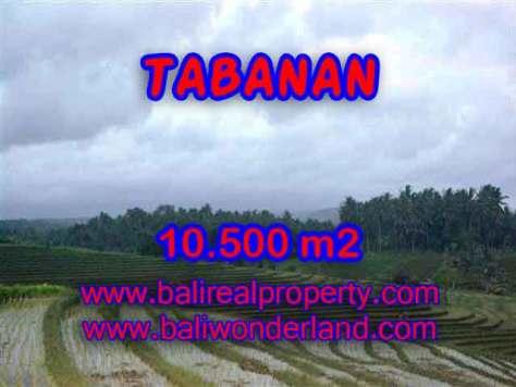 INVESTASI PROPERTI DI BALI - TANAH MURAH DIJUAL DI TABANAN BALI TJTB095
