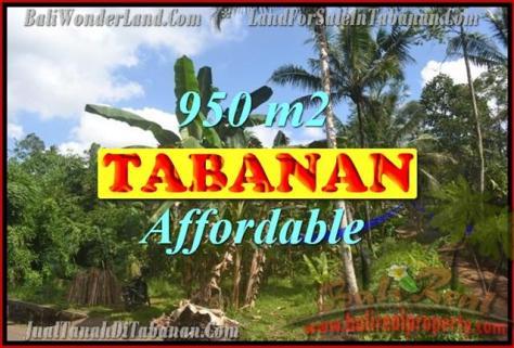 Tanah di TABANAN Bali Dijual murah TJTB146 - investasi property di Bali