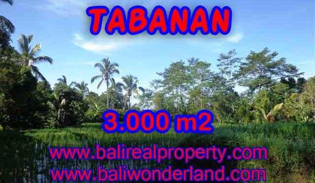 DIJUAL TANAH MURAH DI TABANAN BALI TJTB110